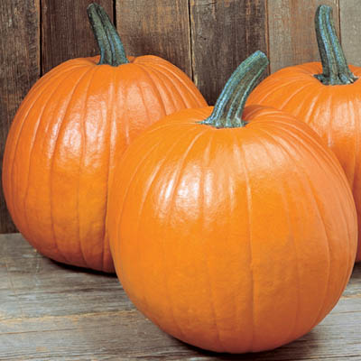 Pumpkin DIY, Recipes & Health Benefits