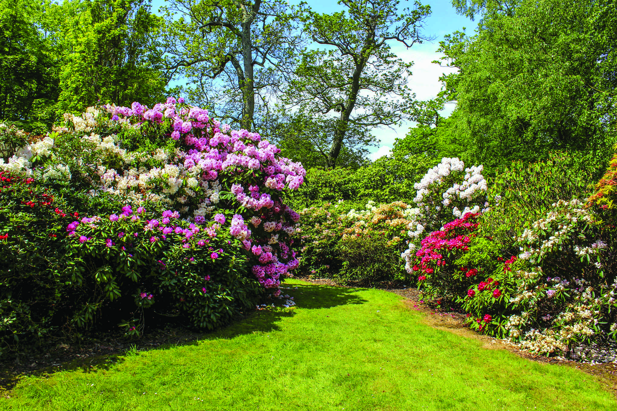 Start Your Garden Off Right