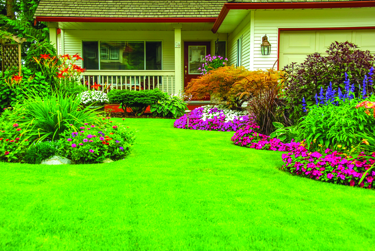 Garden Decor to Bright Space & Mood