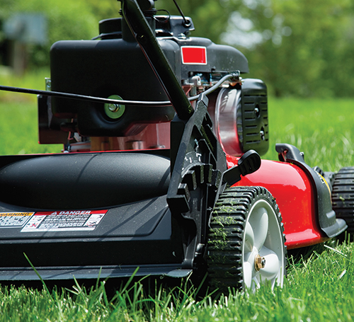 Lawn Envy with Mower & Parts from Shank's Lawn Equipment + Safety Tips