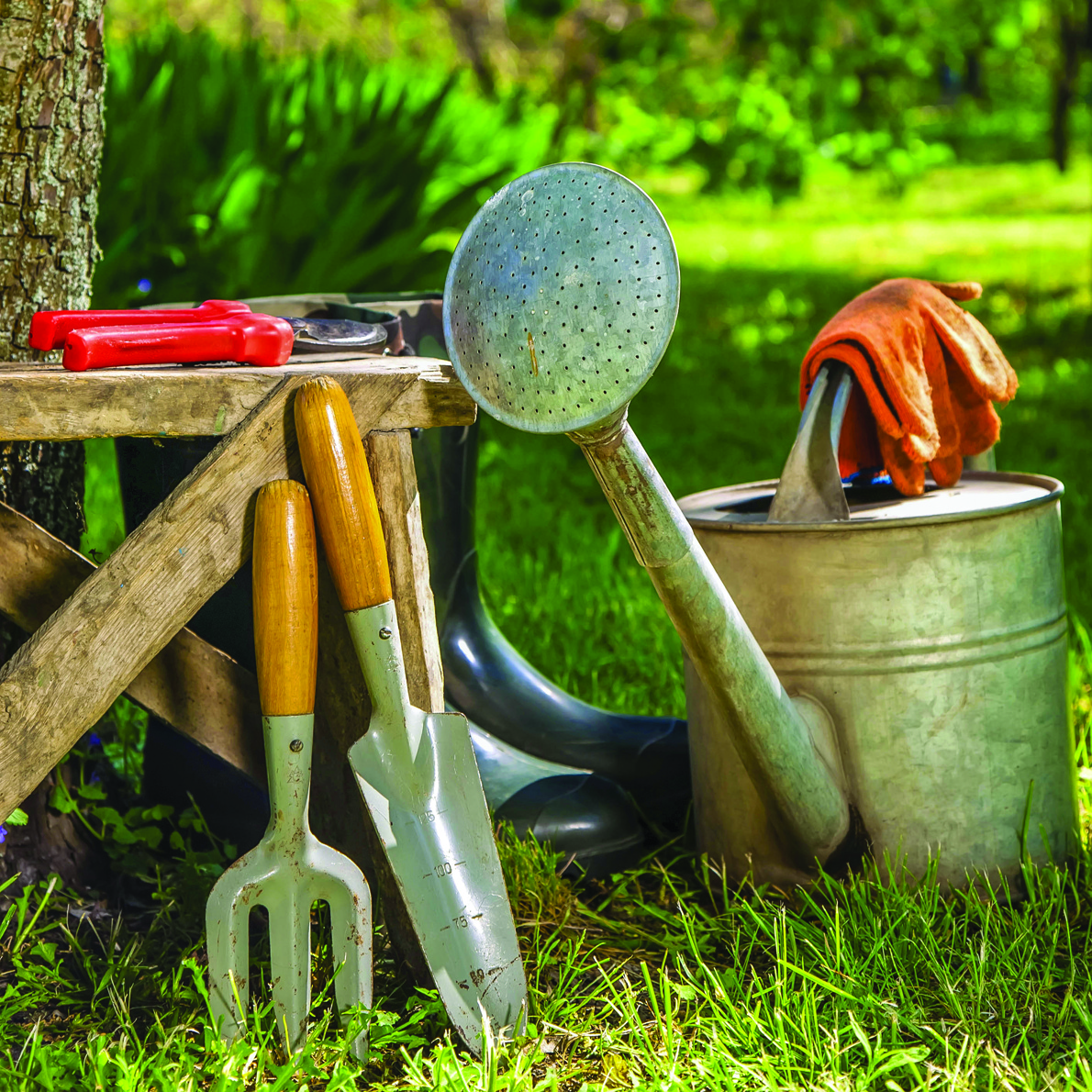Break Ground with the Right Tools