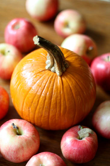 How to Pick the Best Apples & Pumpkins!