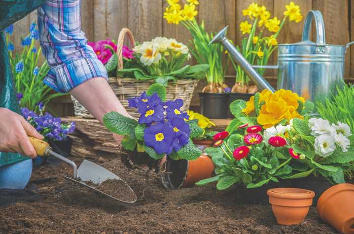 Avoid Aches & Pains When Gardening