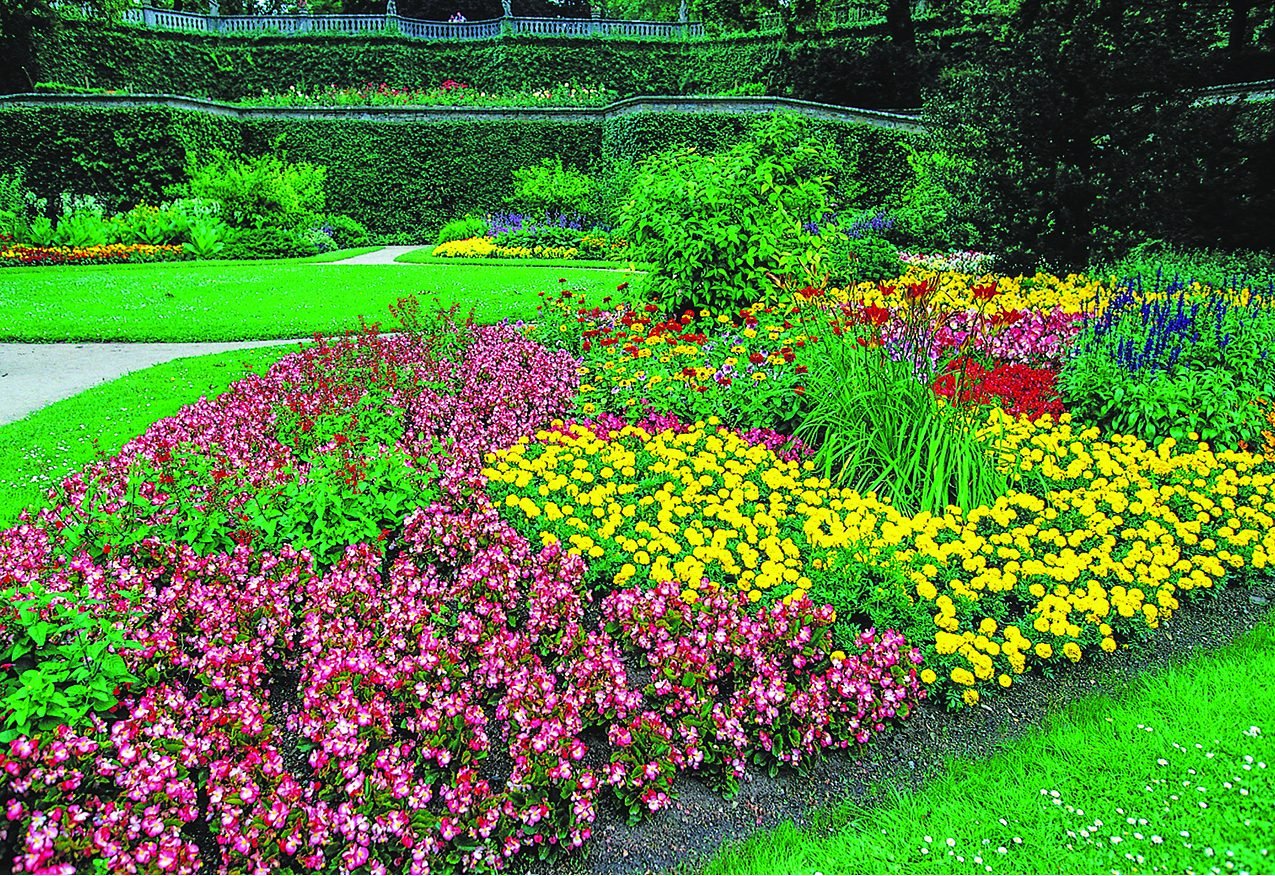 How Color Can Affect Your Garden