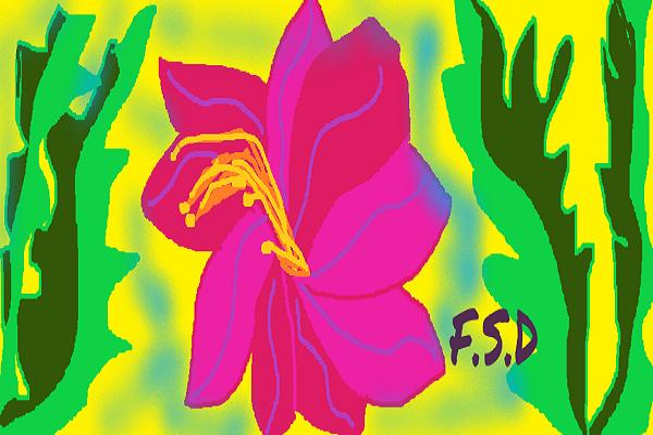 Summer Dance F.S.D