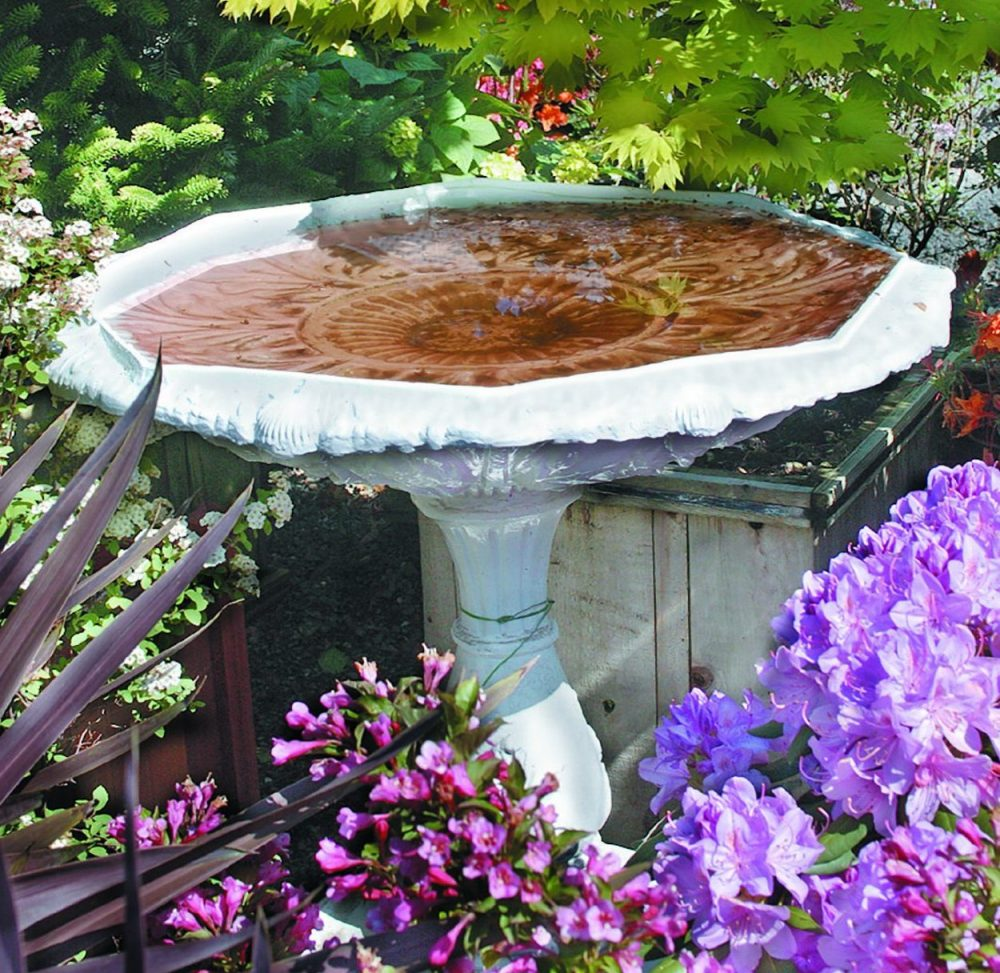 A Guide to Buying and Setting Up a Bird Bath